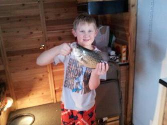 youngins crappie