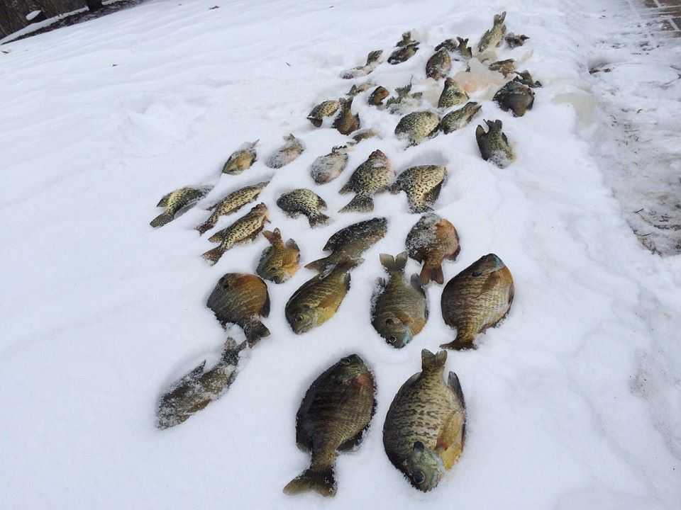 Fishing-report-and-Ice-Report.jpg